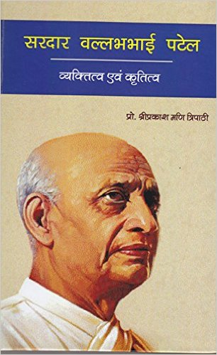 best essay book in hindi
